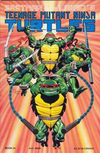 Teenage Mutant Ninja Turtles #24